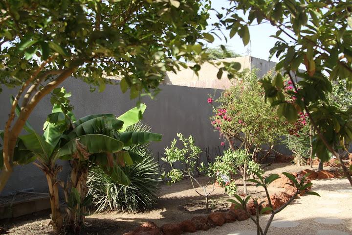 on s'eclate au .... Senegal IMG_1035