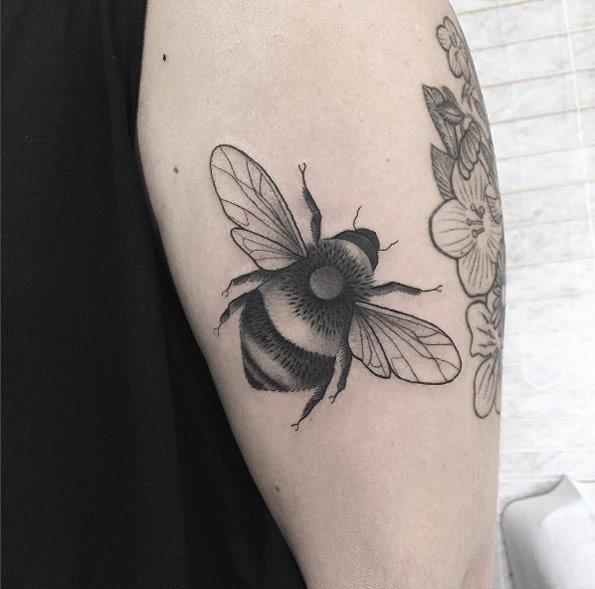 esta_abelha