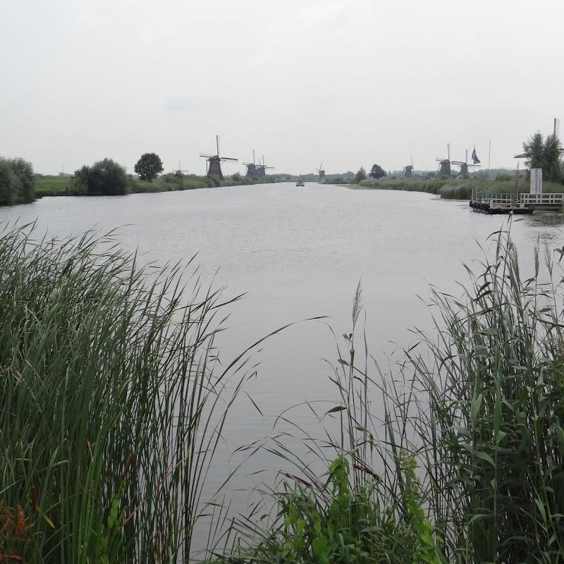 Day_6_Kinderdijk_49.JPG