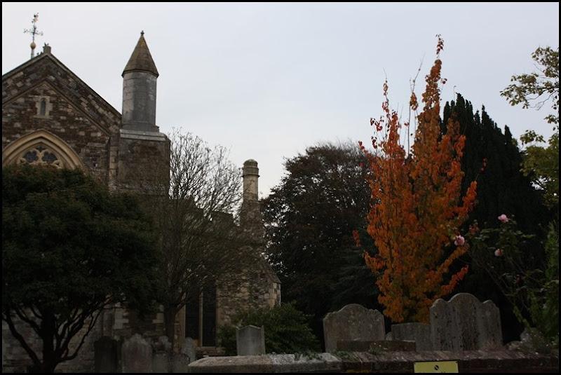 Autumn in Rye