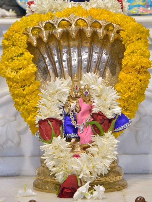 ISKCON Ahmedabad  Deity Darshan 14 June 2016 (10)