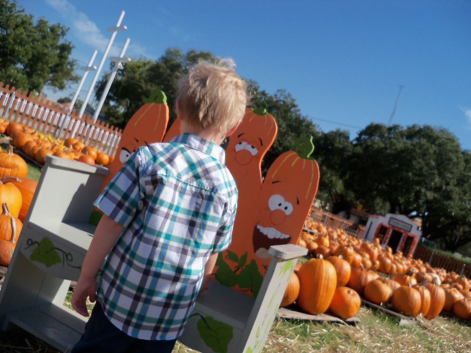 Pumpkin Patch 2015 - 100_0391.JPG