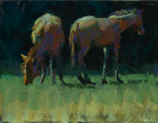 Cumberland island ponies