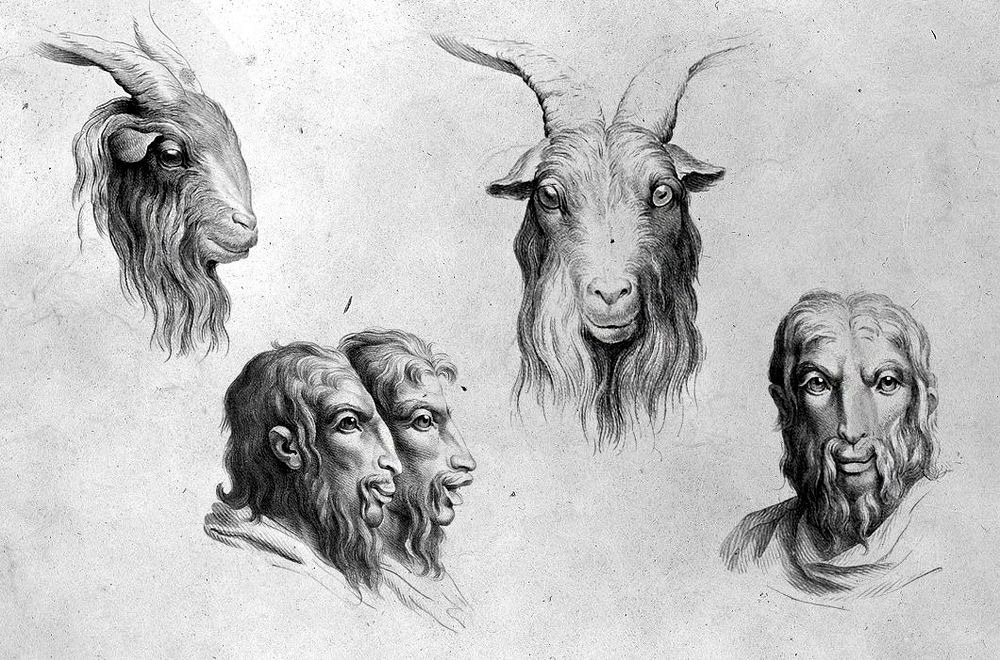 charles-le-brun-physiognomic-heads-13