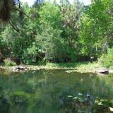 04-04-12 Hillsborough River State Park - IMGP9687.JPG