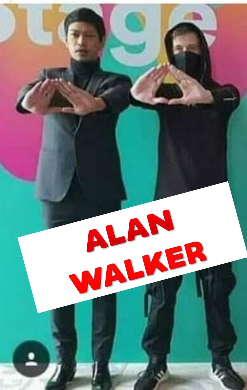 musician Alan Walker