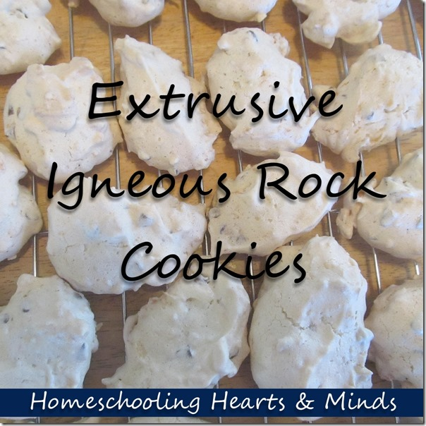 Extrusive Igneous Rock Cookies---Add Some Yum to Homeschool Geology at Homeschooling Hearts & Minds