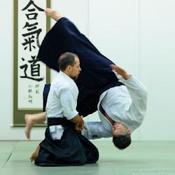 Advanced Class - Sumi Otoshi - Nikkyo
