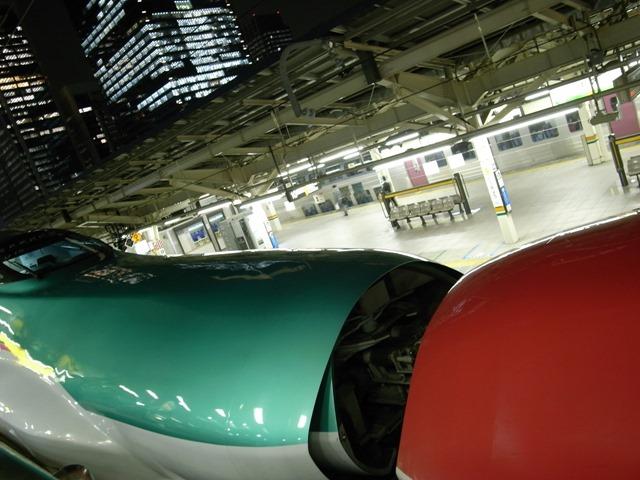 東京駅はやぶさこまち