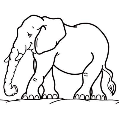 Coloriage éléphant : imprimer dessin elephant