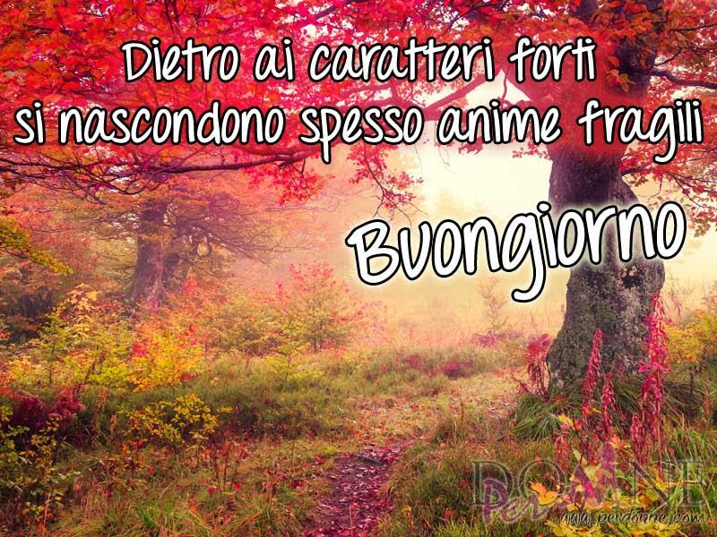 Amato Buongiorno – immagini con frasi e aforismi | PerDonne OC01