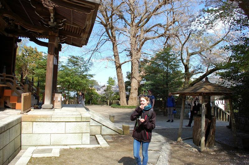 2014 Japan - Dag 7 - jordi-DSC_0243.JPG