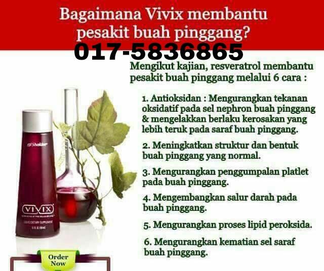 sakit buah pinggang sembuh dengan vivix
