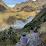 Zulma Soledad Villavicencio Yauri's profile photo