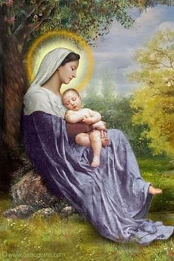 blessed-mother-mary-web