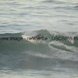 _DSC5888.thumb.jpg