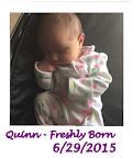 Welcome Quinn