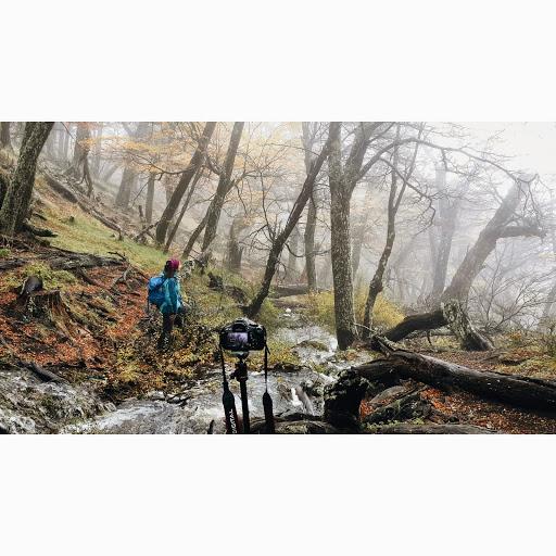 Misty afternoon in el Chalten. Photographer Sebastian Giannone