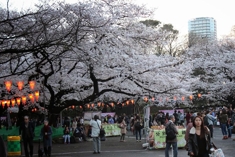 2014 Japan - Dag 1 - marjolein-IMG_0168-0098.JPG