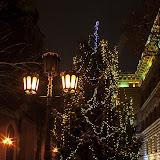 Путь рождественских ёлочек 2013 (Сейм)