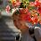 Kate Volobuyeva's profile photo
