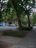 wch_gyula__2010_046.jpg
