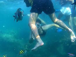 family trip pulau harapan, 1-2 agustus 2015 gopro 37