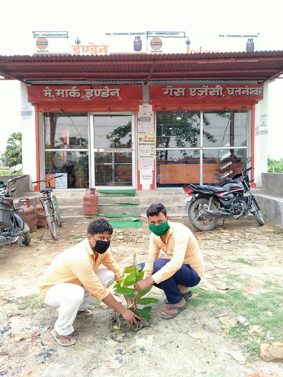 समस्तीपुर :विश्व पर्यावरण दिवस के अवसर पर मार्क इंडेन गैस एजेंसी के द्वारा वृक्षारोपण किया गया।