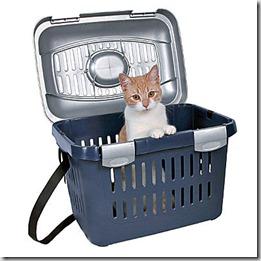Consigli-utili-trasporto-gatto