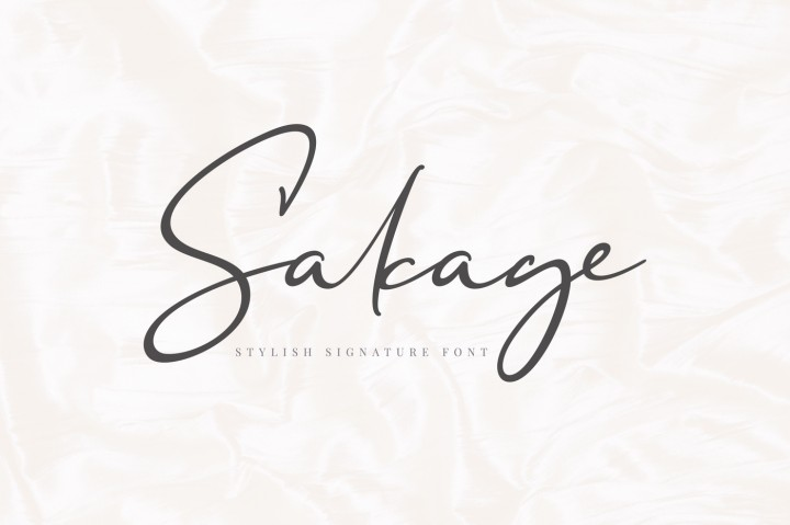 Download Sakage Signature Font Family From aqr typeface