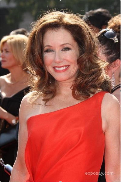 Mary McDonnell Net Worth, Income, Salary, Earnings, Biography, How much money make?