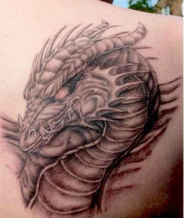 _cabeça_de_drago