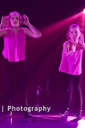 Han Balk Voorster Dansdag 2016-3732.jpg