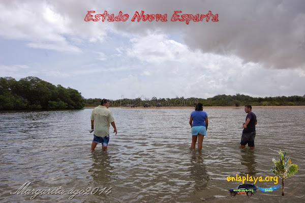 Playa Boca de Palo NE120, Estado Nueva Esparta, Tubores, Venezuela