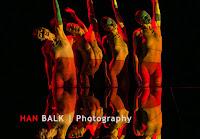 Han Balk Wonderland-7434.jpg