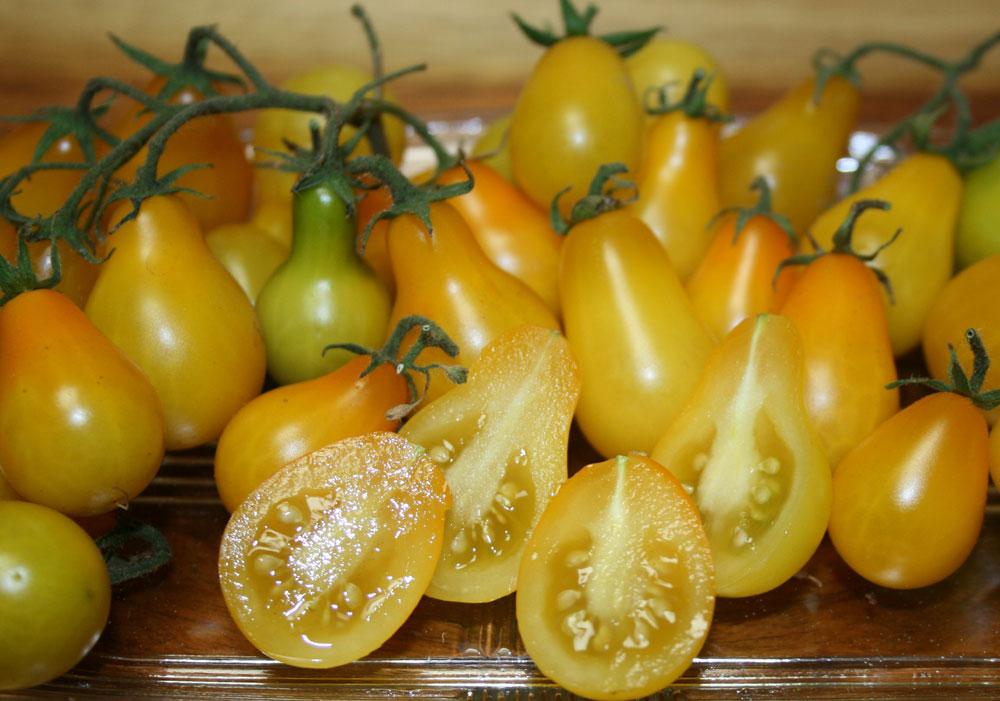 Cà chua bi hình trái lê gây sốt tại Việt Nam - 55c961badc70c