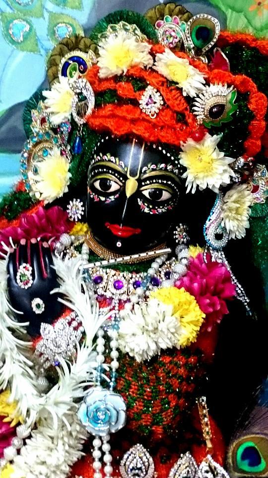 ISKCON Bhusawal Deity Darshan 23 Jan 2016 (2)