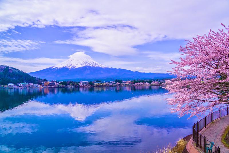 Lake kawaguchiko, cherry blossoms, Mt Fuji, Ubuyagasaki 1