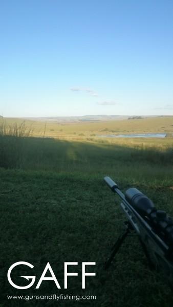 hunting-highveld-africa-dullstroom-blesbuck-blackwildebeest (3).jpg