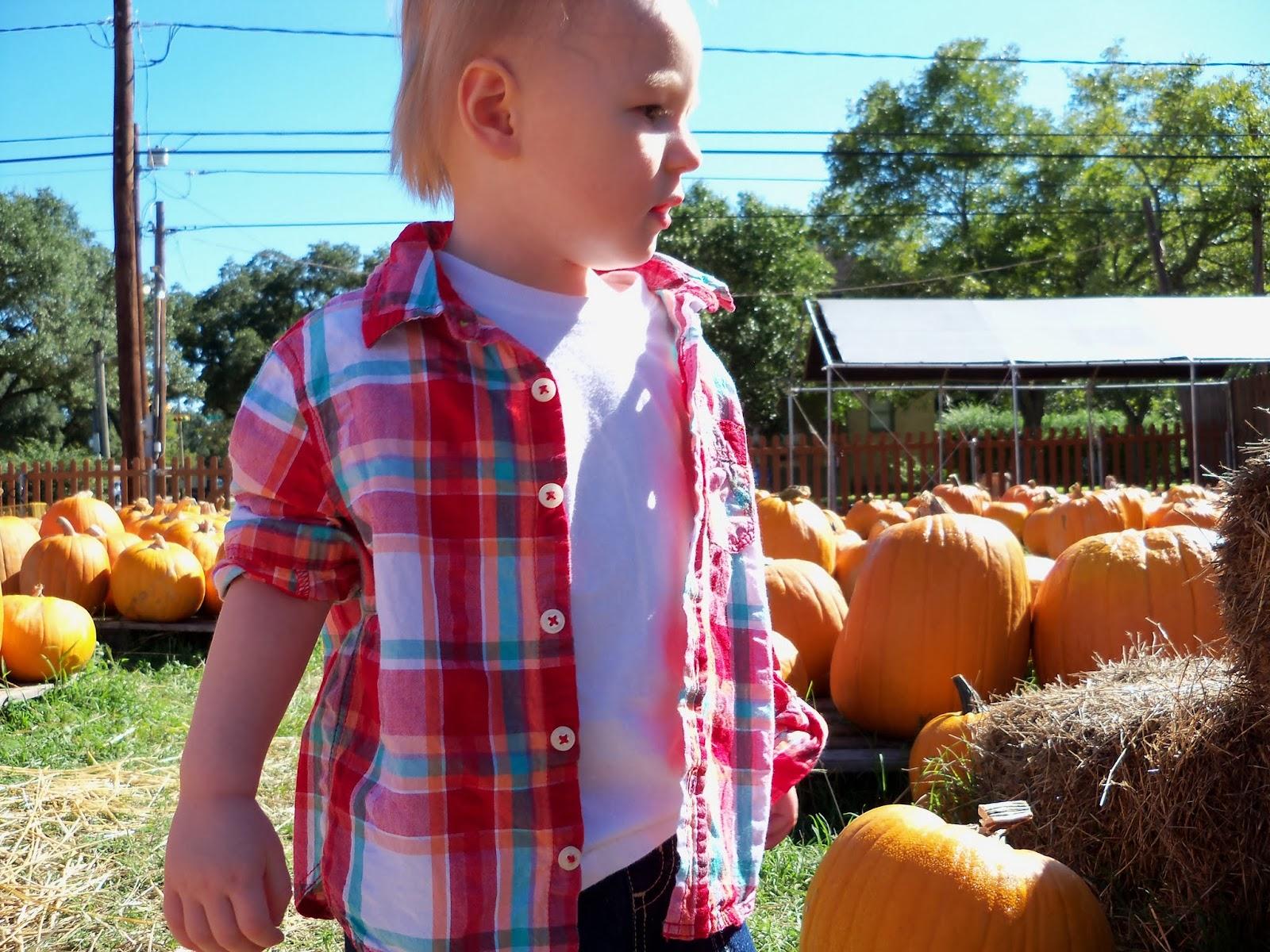 Pumpkin Patch - 115_8219.JPG