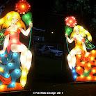 lights 2006 CIMG0029.JPG
