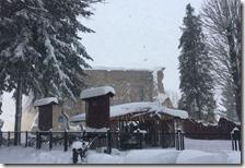 Ad Amatrice è crollato ciò che restava del campanile di Sant'Agostino