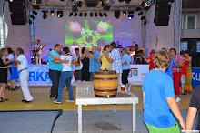 Stadtfest Herzogenburg 2013_ (8)