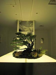 2010年 大阪堂島ホテルでのウェディングディスプレイ 赤松