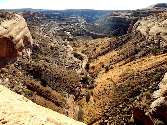 Short side canyon of Horseshoe Canyon