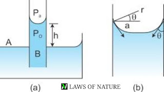 Hydrostatic : fluid at rest study notes for IIT JEE | concept booster chapter highlights |