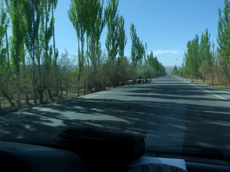 XINJIANG. Karakoram Highway, lune des plus haute route au monde, en passant a 4400 m - P1280466.JPG