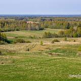 Поля Эстонии