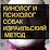 ГИОРГИ МЕЛАДЗЕ's profile photo