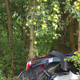 Bû et ses décharges sauvages en Forêt de Dreux (une déchetterie existe à moins de 200 m !). Bû (28), 22 septembre 2011. Photo : J.-M. Gayman